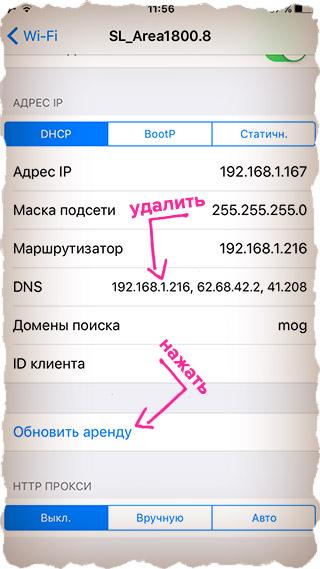 Удаляем DNS адреса и обновляем аренду