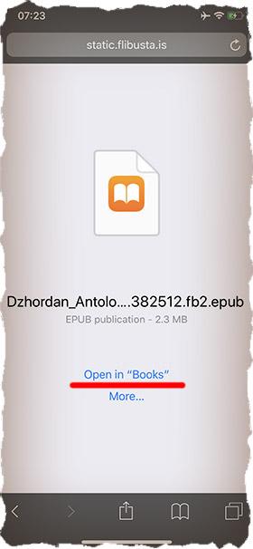 Как сохранить книгу на iPhone