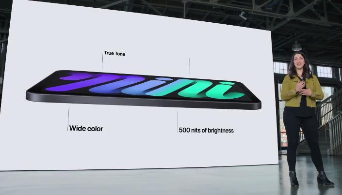 Матрица iPad mini
