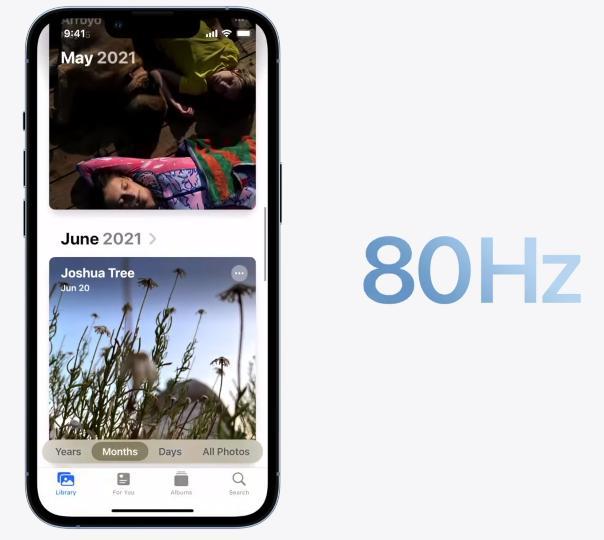 ProMotion в iPhone 13