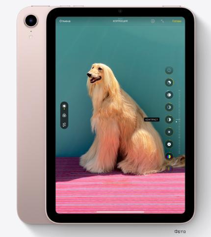 Камера на iPad mini 6
